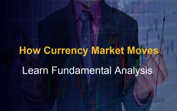 how-currency-market-moves-learn-fundamental-analysis-2020-02-13